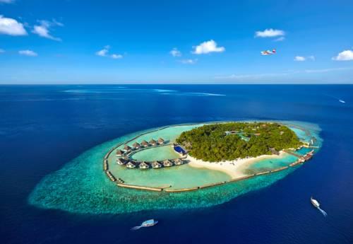 Wyspa z kurortem Chaaya reef ellaidhoo