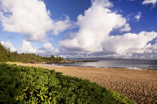 Roślinność na plaży oraz widok na morze the ritz carlton kapula