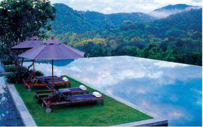 Basen z widokiem na las w veranda chiangmai the high resort