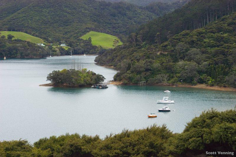 widok z brzegu na port Fitzroy, w tle wzniesienia pokryte zielenią