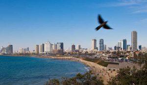 panorama miasta z lotu ptaka, widok na brzeg plaży i centrum, Telawiw