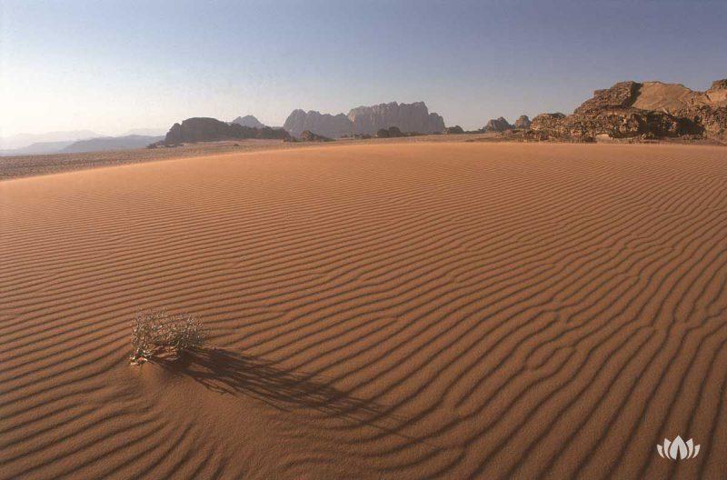 widok na rozległą pustynię w Jordanii