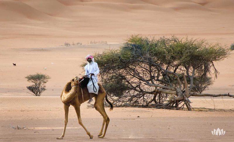 mieszkaniec Omanu podróżujący po pustynii na wielbłądzie