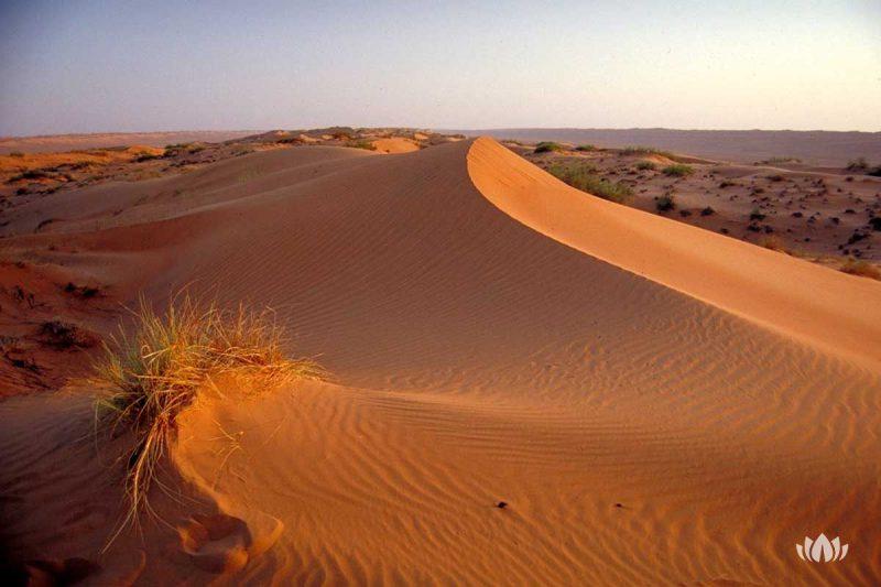 widok z wzniesienia na pustynię, Oman