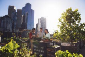 turyści odwiedzający ogrody w Melbourne, w tle panorama miasta