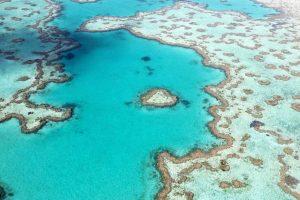 widok z lotu ptaka na rafę koralową w Sydney