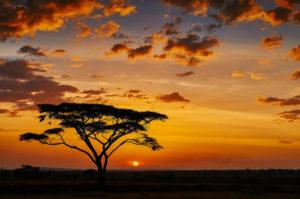 Zachód słońca botswana