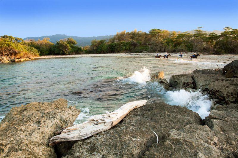 mieszkańcy Jamajki jeżdżący konno plażą wzdłuż brzegu