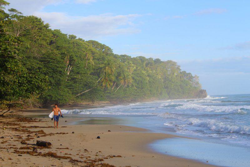 surfer specerujący plażą wzdłuż brzegu oceanu, Kostaryka