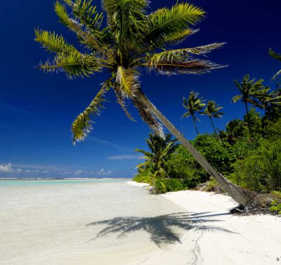 widok na plażę z białym piaskiem, błękitną wodą i bujnymi palmami