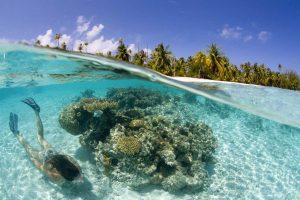 kobieta nurkująca na rafie w błękitnej wodzie, w tle wyspa i palmy, polinezja