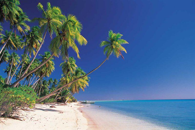 brzeg słonecznej tropikalnej plaży Tahiti, błękitna woda, palmy