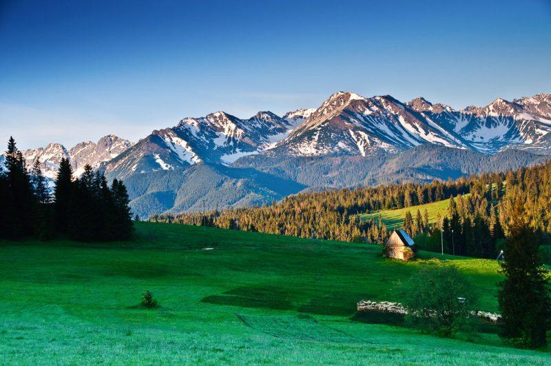 widok z doliny na ośnieżone szczyty Tatr w słoneczny dzień