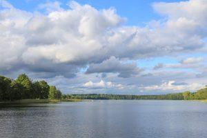 jezioro na Mazurach, w tle lasy