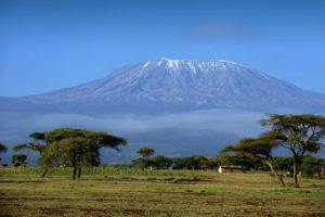 Widok na kilimandzaro