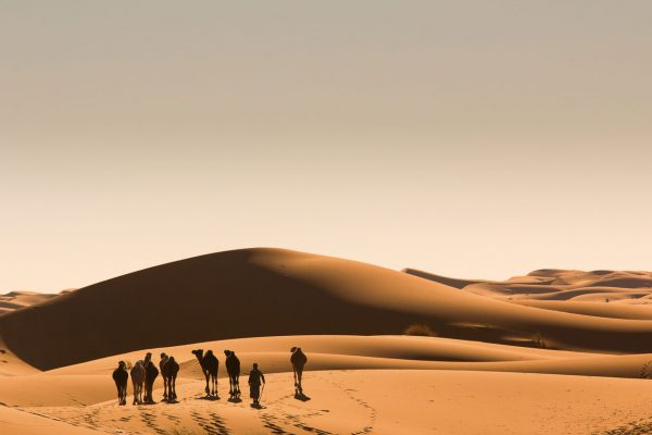 Pustynia w Tunezji