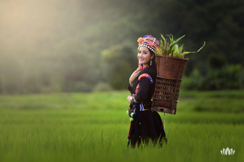 Kobieta z plemienia na wzgórzu chodzi po ryżowych polach